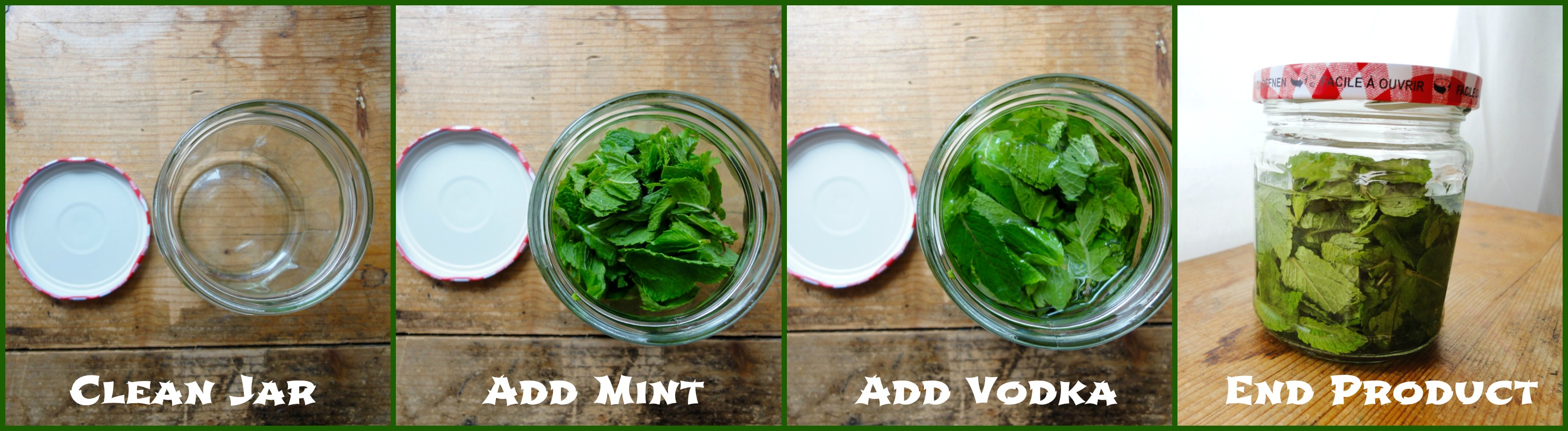 Step By Step Peppermint Extract